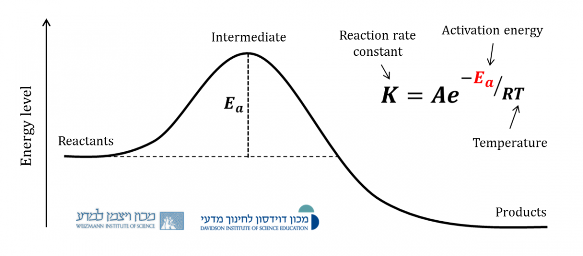rate law and activation energy Arrhenius law and temperature dependence the rate of a reaction depends on the height of the barrier (the activation energy) because only a small fraction of the number of molecules at a.